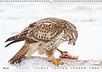 Unsere wilden Tiere im Winter (Wandkalender 2019 DIN A3 quer) - Produktdetailbild 9