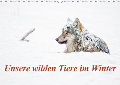 Unsere wilden Tiere im Winter (Wandkalender 2019 DIN A3 quer), Wilfried Martin