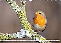 Unsere wilden Tiere im Winter (Wandkalender 2019 DIN A3 quer) - Produktdetailbild 3