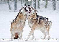 Unsere wilden Tiere im Winter (Wandkalender 2019 DIN A3 quer) - Produktdetailbild 4