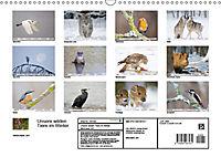 Unsere wilden Tiere im Winter (Wandkalender 2019 DIN A3 quer) - Produktdetailbild 13