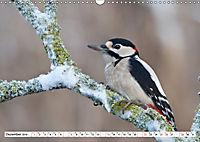 Unsere wilden Tiere im Winter (Wandkalender 2019 DIN A3 quer) - Produktdetailbild 12