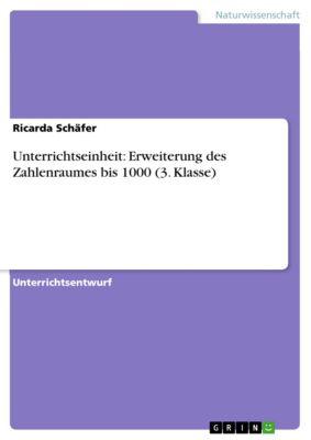Unterrichtseinheit: Erweiterung des Zahlenraumes bis 1000 (3. Klasse), Ricarda Schäfer