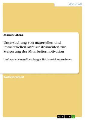 Untersuchung von materiellen und immateriellen Anreizinstrumenten zur Steigerung der Mitarbeitermotivation, Jasmin Litera