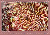 Unterwasser Kunstwerke (Tischkalender 2019 DIN A5 quer) - Produktdetailbild 9