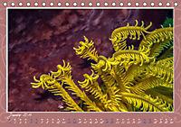 Unterwasser Kunstwerke (Tischkalender 2019 DIN A5 quer) - Produktdetailbild 1