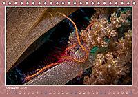 Unterwasser Kunstwerke (Tischkalender 2019 DIN A5 quer) - Produktdetailbild 11