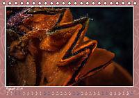 Unterwasser Kunstwerke (Tischkalender 2019 DIN A5 quer) - Produktdetailbild 8