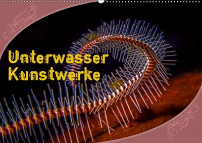 Unterwasser Kunstwerke (Wandkalender 2019 DIN A2 quer), Dieter Gödecke