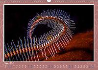 Unterwasser Kunstwerke (Wandkalender 2019 DIN A3 quer) - Produktdetailbild 3