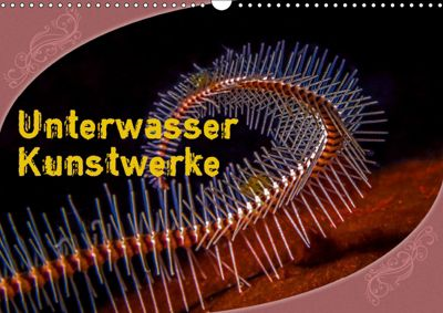 Unterwasser Kunstwerke (Wandkalender 2019 DIN A3 quer), Dieter Gödecke