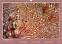 Unterwasser Kunstwerke (Wandkalender 2019 DIN A3 quer) - Produktdetailbild 9