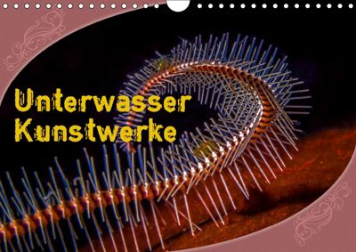 Unterwasser Kunstwerke (Wandkalender 2019 DIN A4 quer), Dieter Gödecke