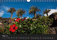 Unterwegs auf Lanzarote (Wandkalender 2019 DIN A4 quer) - Produktdetailbild 3