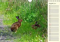 Unterwegs zwischen Rochlitz und Colditz (Wandkalender 2019 DIN A4 quer) - Produktdetailbild 8