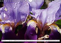 Unusual Blooms Up Close (Wall Calendar 2019 DIN A4 Landscape) - Produktdetailbild 5