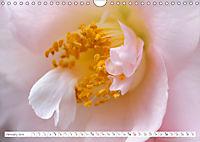 Unusual Blooms Up Close (Wall Calendar 2019 DIN A4 Landscape) - Produktdetailbild 1