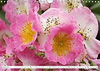 Unusual Blooms Up Close (Wall Calendar 2019 DIN A4 Landscape) - Produktdetailbild 4