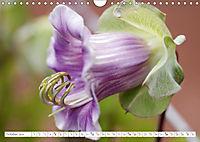 Unusual Blooms Up Close (Wall Calendar 2019 DIN A4 Landscape) - Produktdetailbild 10