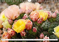 Unusual Blooms Up Close (Wall Calendar 2019 DIN A4 Landscape) - Produktdetailbild 3