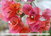 Unusual Blooms Up Close (Wall Calendar 2019 DIN A4 Landscape) - Produktdetailbild 11