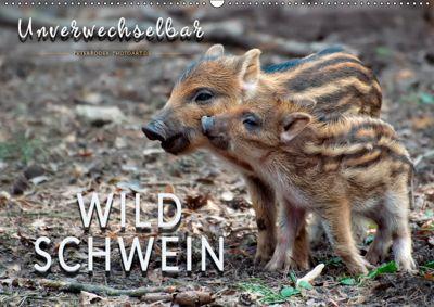 Unverwechselbar - Wildschwein (Wandkalender 2019 DIN A2 quer), Peter Roder