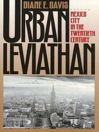 Urban Leviathan, Diane Davis
