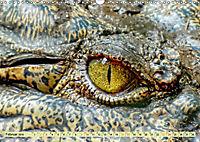 Urzeitreptilien - Krokodil (Wandkalender 2019 DIN A3 quer) - Produktdetailbild 2