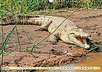 Urzeitreptilien - Krokodil (Wandkalender 2019 DIN A3 quer) - Produktdetailbild 6