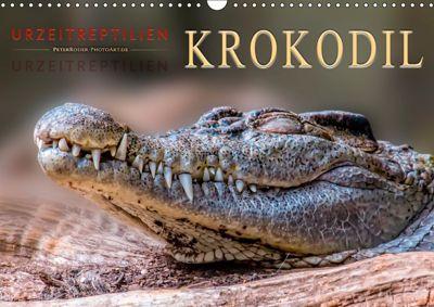 Urzeitreptilien - Krokodil (Wandkalender 2019 DIN A3 quer), Peter Roder