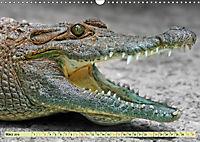 Urzeitreptilien - Krokodil (Wandkalender 2019 DIN A3 quer) - Produktdetailbild 3