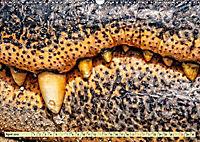 Urzeitreptilien - Krokodil (Wandkalender 2019 DIN A3 quer) - Produktdetailbild 4