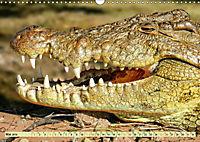 Urzeitreptilien - Krokodil (Wandkalender 2019 DIN A3 quer) - Produktdetailbild 5