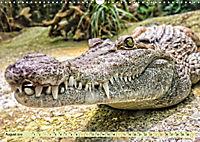 Urzeitreptilien - Krokodil (Wandkalender 2019 DIN A3 quer) - Produktdetailbild 8