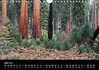 USA South-West 2019 (Wall Calendar 2019 DIN A4 Landscape) - Produktdetailbild 7