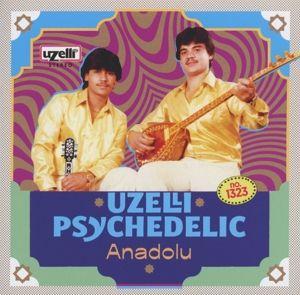 Uzelli Psychedelic Anadolu, Diverse Interpreten