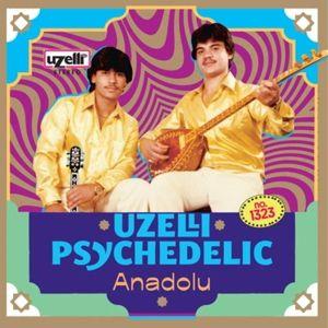 Uzelli Psychedelic Anadolu (Vinyl), Diverse Interpreten