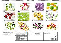 VEGETARISCHER QUERSCHNITT (Wandkalender 2019 DIN A2 quer) - Produktdetailbild 13