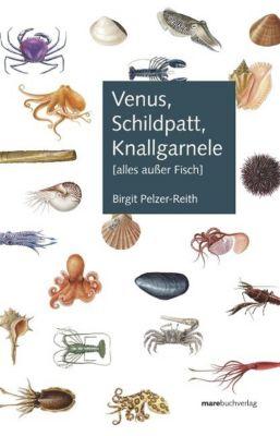 Venus, Schildpatt, Knallgarnele, Birgit Pelzer-Reith