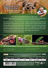 Verborgene Welten - Das geheime Leben der Insekten - Produktdetailbild 1