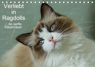 Verliebt in Ragdolls ... die sanfte Katzenrasse (Tischkalender 2019 DIN A5 quer), Marion Reiss-Seibert