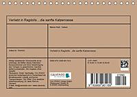 Verliebt in Ragdolls ... die sanfte Katzenrasse (Tischkalender 2019 DIN A5 quer) - Produktdetailbild 13