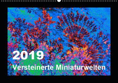 Versteinerte Miniaturwelten - Farbenspiele auf Solnhofener Plattenkalk (Wandkalender 2019 DIN A2 quer), Dietmar Leitner