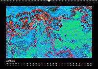 Versteinerte Miniaturwelten - Farbenspiele auf Solnhofener Plattenkalk (Wandkalender 2019 DIN A2 quer) - Produktdetailbild 4