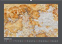 Versteinerte Miniaturwelten. Solnhofener Plattenkalk (Wandkalender 2019 DIN A2 quer) - Produktdetailbild 12