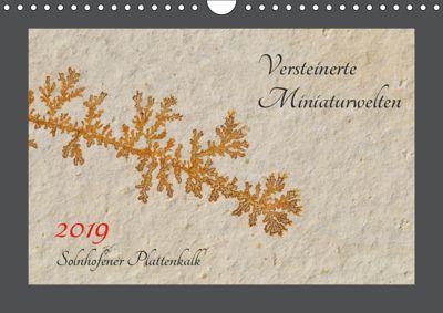 Versteinerte Miniaturwelten. Solnhofener Plattenkalk (Wandkalender 2019 DIN A4 quer), Dietmar Leitner