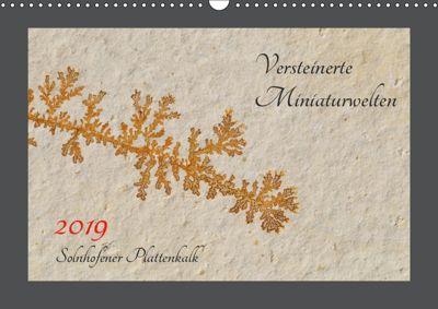 Versteinerte Miniaturwelten. Solnhofener Plattenkalk (Wandkalender 2019 DIN A3 quer), Dietmar Leitner