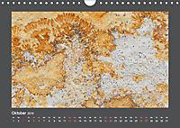 Versteinerte Miniaturwelten. Solnhofener Plattenkalk (Wandkalender 2019 DIN A4 quer) - Produktdetailbild 10