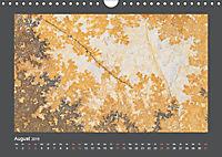Versteinerte Miniaturwelten. Solnhofener Plattenkalk (Wandkalender 2019 DIN A4 quer) - Produktdetailbild 8
