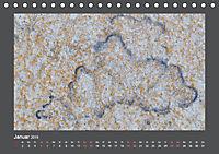 Versteinerte Miniaturwelten. Solnhofener Plattenkalk (Tischkalender 2019 DIN A5 quer) - Produktdetailbild 1